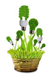 Eco energy bulbs in pot Stock Photos
