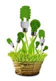 Eco energy bulbs in pot. Isolated on white Stock Photos