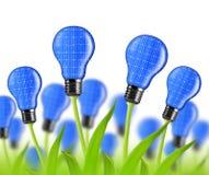 Eco energy bulbs from solar panels Stock Photo