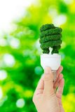 Eco energy concept Stock Photography