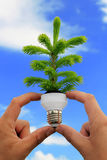 Eco energy concept royalty free stock photo