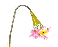 Eco energy concept. Flowers growing out of a green lamp Stock Image