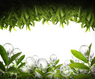 Eco energy concept. Idea ,light bulb Alternative energy concept Royalty Free Stock Image