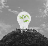 Eco energy concept. Light bulb with small green leaf plant inside on pile of soil over black and white sky, Eco energy concept Royalty Free Stock Photography