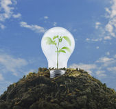 Eco energy concept. Light bulb with small green leaf plant inside on pile of soil over blue sky, Eco energy concept Royalty Free Stock Images