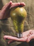 Eco energy lamp pear Stock Photos