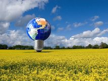 Eco energy light bulb. Earth concept in rapeseed field Royalty Free Stock Images
