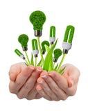 Eco energy light bulbs in hand Stock Photos
