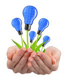 Eco energy light bulbs in hands Royalty Free Stock Photography