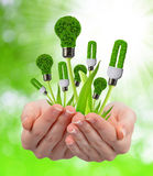 Eco energy light bulbs in hands Royalty Free Stock Image