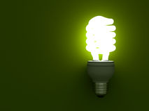 Eco energy saving compact fluorescent light bulb Royalty Free Stock Images