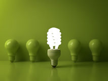 Eco energy saving light bulb , one glowing compact fluorescent lightbulb Royalty Free Stock Photo