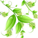 Eco energy tree vector concept Stock Images