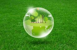 Eco-Erde auf neuem Frühling Lizenzfreie Stockbilder