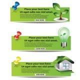 Eco Fahnenset Lizenzfreie Stockfotos
