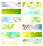 Eco Fahnenset Stockfotografie