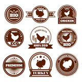 Eco farm chicken turkey emblems Royalty Free Stock Image