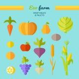 Eco Farm Conceptual Vector in Flat Style Design. Stock Photos