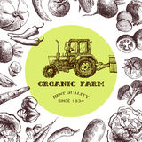Eco farm sketch Royalty Free Stock Images