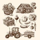 Eco farm sketch Royalty Free Stock Photos