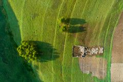Eco farming in country side on Romanian mountains aerial view from drone stock images
