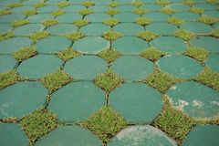 Eco flooring use from cement block and green grass Royalty Free Stock Photos