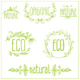ECO Floral Frame Collection Royalty Free Stock Photography