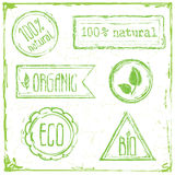 ECO Floral Frame Collection stamp Royalty Free Stock Photos