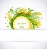 Eco Floral Transparent Frame Stock Image
