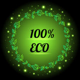 100 % eco food banner. Royalty Free Stock Image