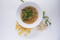 Eco food. Germs in a plate, healthy live food photo with copy space for text Stock Photo