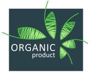 Eco food logo, organic bio products simbol, eco friendly, vegan icons, ecology badges. vector illustration