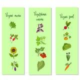 Eco food vegan menu templates Royalty Free Stock Images