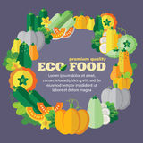Eco food (vegetables, pumpkin family) + EPS 10 Stock Image