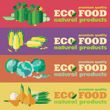 Eco food. Vegetables. Web banners set Royalty Free Stock Photography