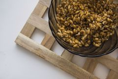 Eco food wheat , diagonal copy space Stock Images