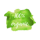 Eco Fresh Organic Green Food vector word, text, icon, symbol, poster, logo on hand drawn green paint background illustration Stock Image