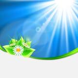 Eco-friendly background Stock Photo