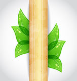 Eco friendly background with green leaves. Illustration eco friendly background with green leaves, wooden texture - vector Stock Images