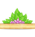 Eco friendly background with green leaves, flower Stock Photography