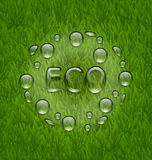 Eco friendly background with water drops on fresh green grass te Stock Photos