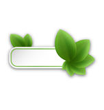 Eco friendly banner with green leaves Royalty Free Stock Photos
