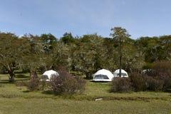 Eco-friendly camp in Tierra del Fuego Stock Image