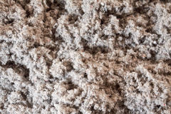 Eco-friendly cellulose insulation made from recycled paper. For building constructions, insulation for walls, ceiling insulation, insulation for floors stock photo