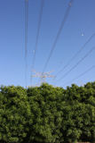 Eco friendly electric pylon Stock Images