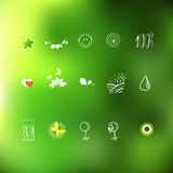Eco friendly hand drawing linear icons Stock Image