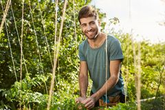 Eco friendly. Healthy lifestyle concept. Outdoors portrait of young attractive bearded caucasian male farmer smiling in Stock Photos