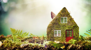 Eco friendly house concept with moss covered model Stock Image