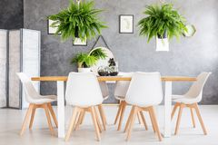 Eco friendly house room interior. Eco friendly house dining room interior with fern plants and a screen Stock Image