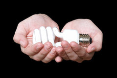 Eco Friendly Light Bulb Stock Images